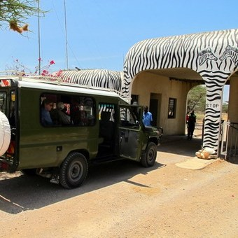 Picture of The National Parks tour of East Africa