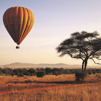 Picture of The East Africa Safari tour of Kenya