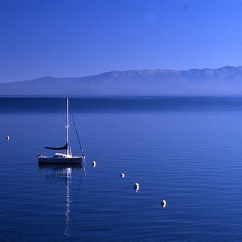 Picture of Half Day Photography Tour of Lake Tahoe