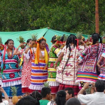 Picture of The Guelaguetza Festival: Indigenous resilience in Oaxaca, Mexico