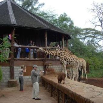 Picture of The Best Excursions Around Nairobi tour of Kenya