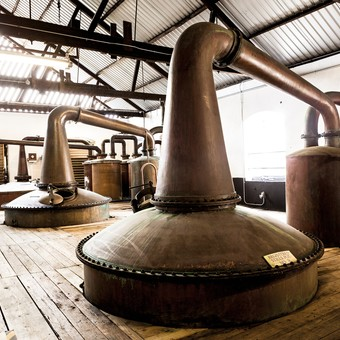 Picture of DISTILLERY EXPERIENCE WITH TRANSPORTATION ( ADULTS ONLY )